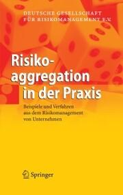 Risikoaggregation in der Praxis