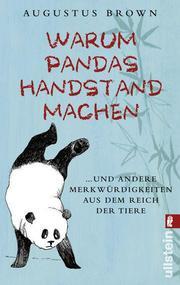 Warum Pandas Handstand machen