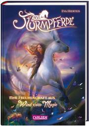 Eine Freundschaft aus Wind und Magie - Cover