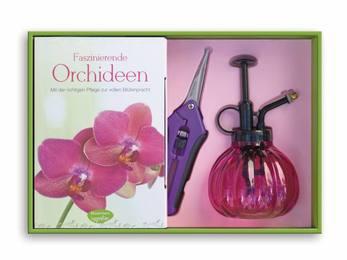 Faszinierende Orchideen