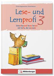 Lese- und Lernprofi 3 - Schülerarbeitsheft - silbierte Ausgabe