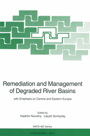 Remediation and Management of Degraded River Basins