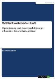 Optimierung und Kostenreduktion im e-business Projektmanagement