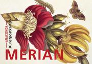 Postkarten-Set Maria Sibylla Merian
