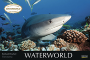 Waterworld 2022