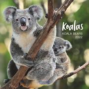 Koalas 2022