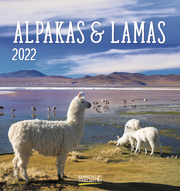 Alpakas & Lamas 2022