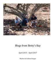 Blogs from Betty's Bay
