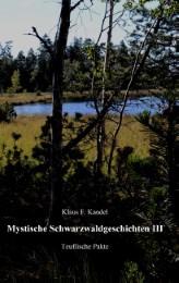 Mystische Schwarzwaldgeschichten III