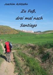 Zu Fuß......, dreimal nach Santiago.