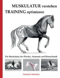 Muskulatur verstehen - Training optimieren