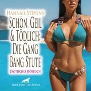 Schön, Geil und Tödlich: Die Gang Bang Stute / Erotische Geschichte
