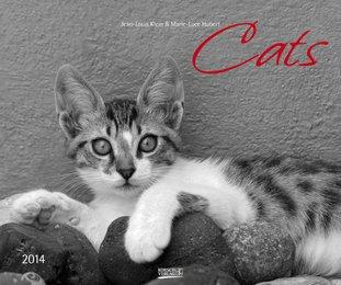 Cats 2014
