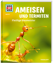 Ameisen und Termiten
