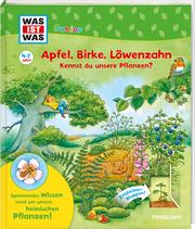Apfel, Birke, Löwenzahn Kennst du unsere Pflanzen?