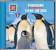 Pinguine/Tiere im Zoo