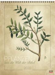 Pflanzen aus der Welt der Bibel 2020