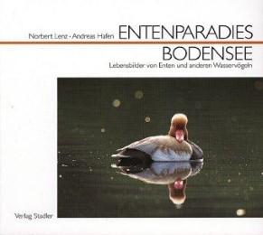 Entenparadies Bodensee