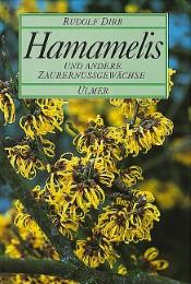 Hamamelis - Cover