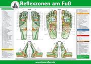Reflexzonen am Fuß