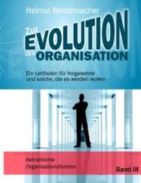 Zur Evolution der Organisation - Band III