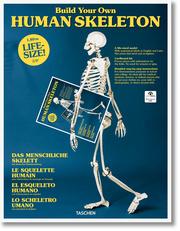 Build Your Own Human Skeleton/Das menschliche Skelett - Life Size!