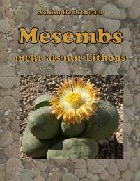 Mesembs - mehr als nur Lithops