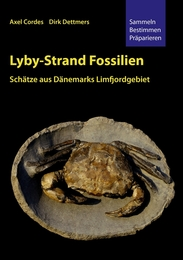 Lyby-Strand Fossilien