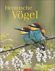 Heimische Vögel Kalender 2022