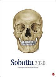 Sobotta 2020
