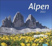 times&more Alpen 2022
