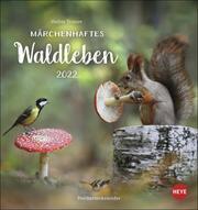 Märchenhaftes Waldleben Postkartenkalender 2022