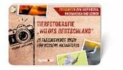 Tierfotografie 'Wildes Deutschland'