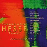 Hesse Projekt 2