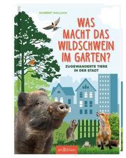 Was macht das Wildschwein im Garten?