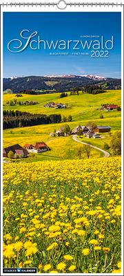 Schwarzwald, vertikal 2022