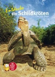 Entdecke die Schildkröten