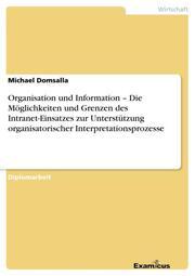 Organisation und Information - Die Möglichkeiten und Grenzen des Intranet-Einsatzes zur Unterstützung organisatorischer Interpretationsprozesse