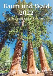 Baum und Wald 2022