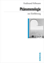 Phänomenologie zur Einführung