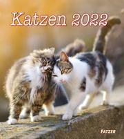Katzen 2022 (Wandkalender)