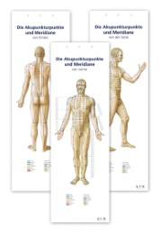 Die Akupunkturpunkte und Meridiane