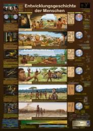 Entwicklungsgeschichte der Menschen