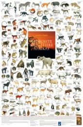 Bedrohte Säugetiere Afrikas