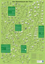 Der Stammbaum der Tiere