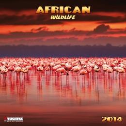African Wildlife 2014