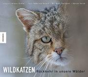 Wildkatzen - Cover