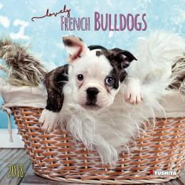Lovely French Bulldogs 2018
