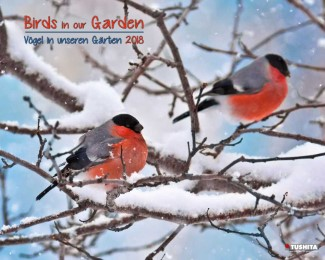 Birds in our Garden 2018