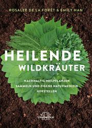 Heilende Wildkräuter - Cover